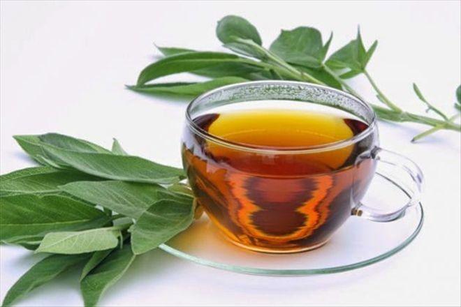 Okaliptüs Çayı Nelere İyi Gelir?